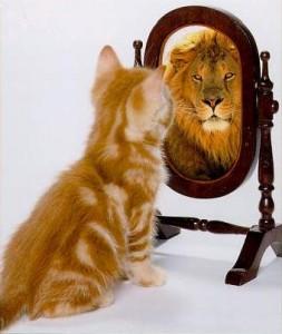 Body-dysmorphic-disorder-cat-mirror